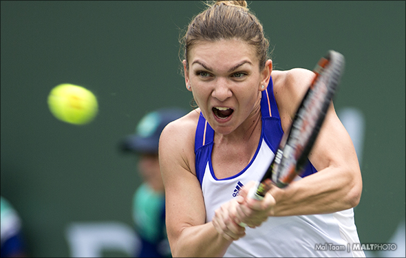 Halep can actually win Roland Garros again