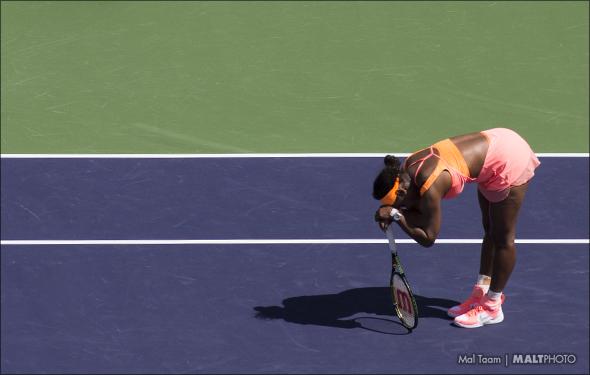 Serena IW 15 TR MALT7991